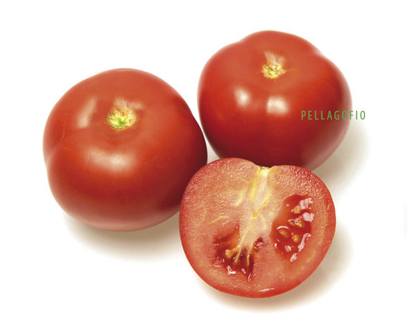 TOMATE CANARIO 1KG